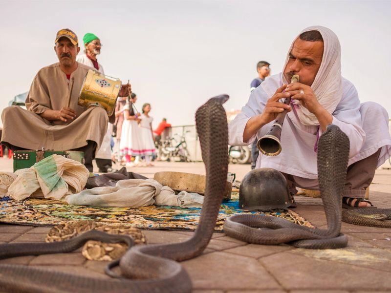 Charmeur de serpents sur la place Jemâa El F'na à Marrakech