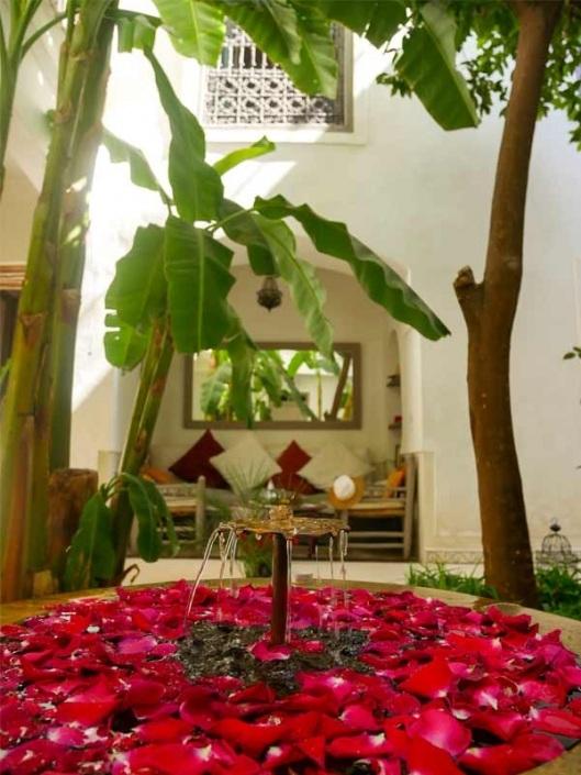 photo d'une fontaine avec des pétales de rose dans un riad à Marrakech au Maroc
